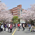 Bảo hiểm du học Hàn Quốc và những điều cần biết
