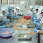 Bảo hiểm trách nhiệm sản phẩm (PRL) – Bảo hiểm Bảo Việt
