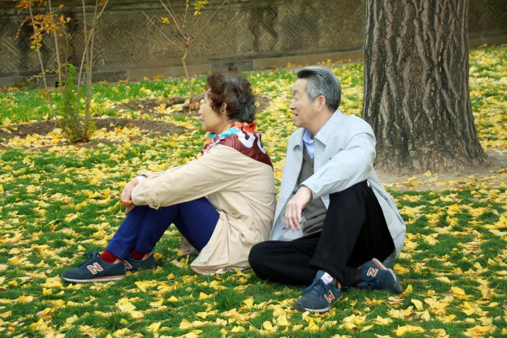 Mua bảo hiểm du lịch cho người cao tuổi cần lưu ý điều gì?
