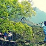 Phí bảo hiểm du lịch Bảo Việt như thế nào?