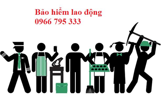 Bảo hiểm lao động