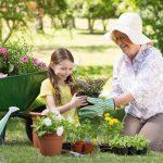 Bảo hiểm sức khỏe cho người già – bảo việt intercare