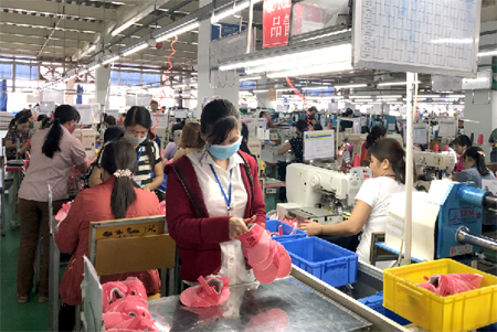 Mua bảo hiểm tai nạn lao động tại Ninh Bình