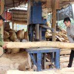 Mua bảo hiểm tai nạn cho người lao động tại Phú Thọ